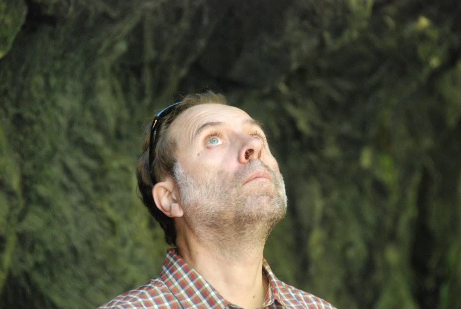 Portrait photo of Martin Westlake gazing upwards